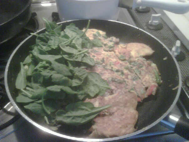 topped with raw spinach